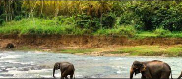 Weather in Sri Lanka